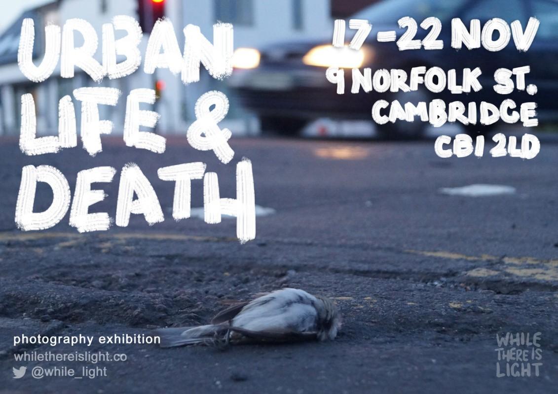 urban life and death cambridge exhibition flyer