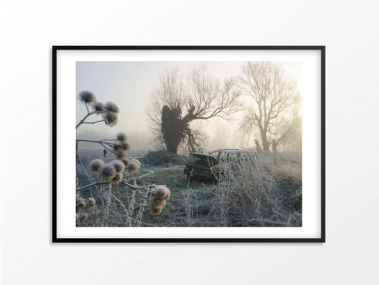 framed art print burnt out jeep in field with seed heads, trees and frost in winter