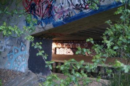 graffiti on underpass wall - part in sunlight reads 'brokelynnzoo' - beneath a47