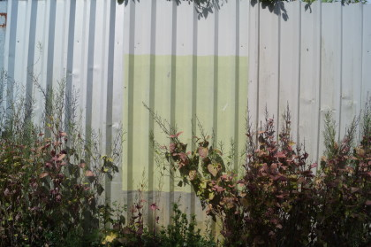 painted green square on metal fence of appleton's yard with foliage