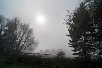 lode mist