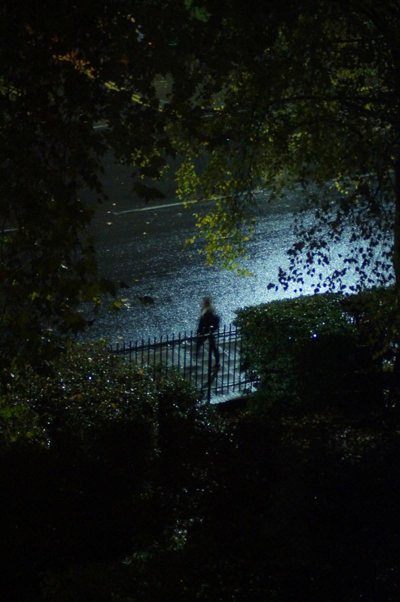 islington night photography pedestrian through trees