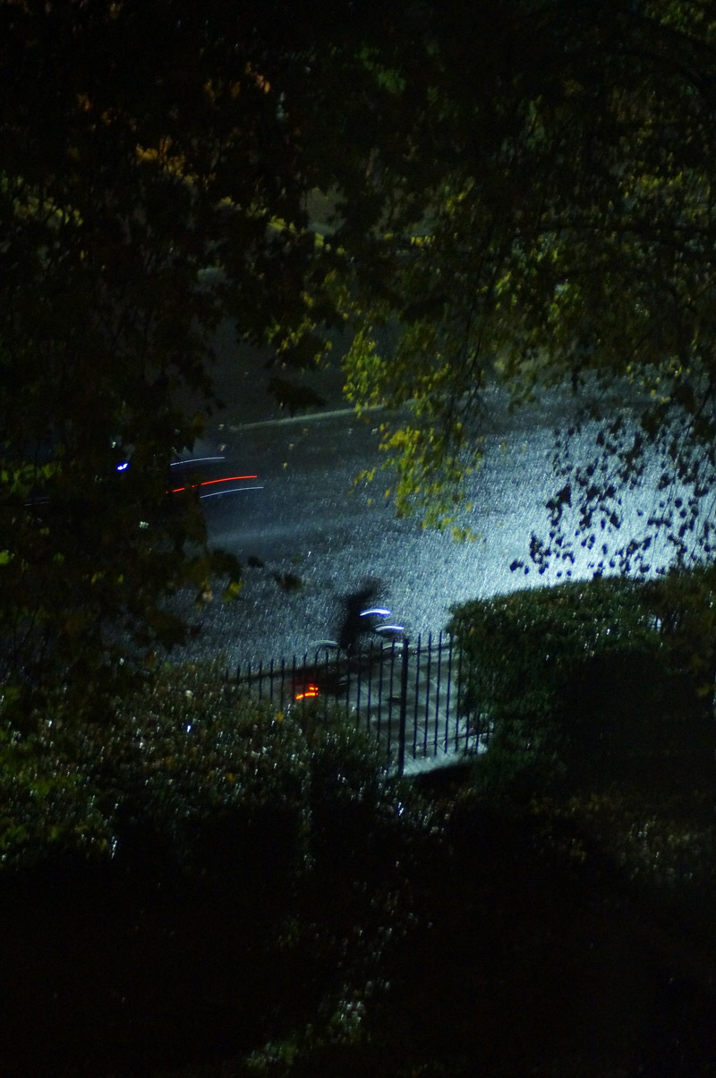 islington night photography cyclist through trees