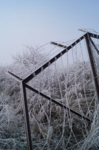 king's lynn nar loop frost on fence and barbed wire